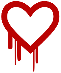 assets/files/Heartbleed.png